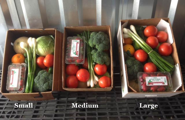 small medium and large produce boxes
